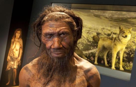 Neanderthal-model